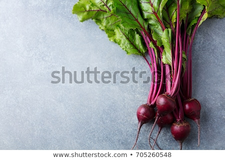 beetroot and veggie soup  Stock photo © dornes