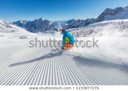 スキー 運動 ベクトル 男性 冬 旅行 ストックフォト © yura_fx