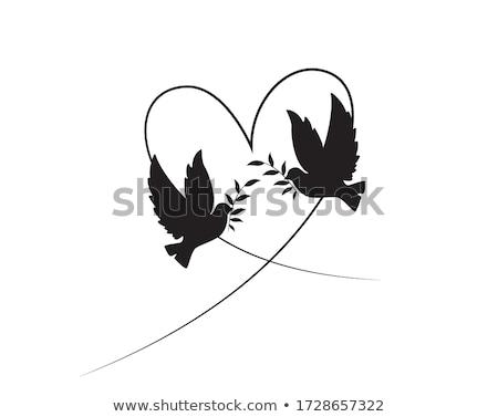 two dove and heart stock photo © marisha