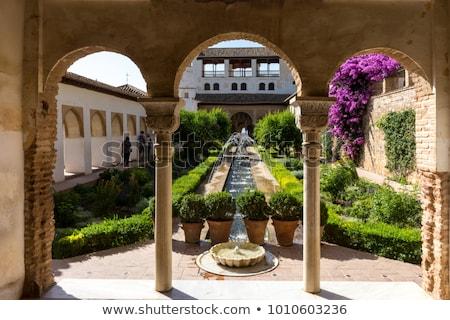 表示 · アルハンブラ宮殿 · 宮殿 · スペイン · 庭園 · 古代 - ストックフォト © neirfy