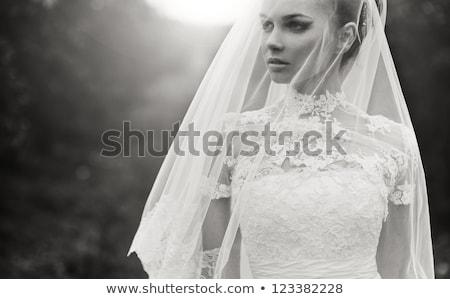 Stock photo: Beauty - Fashionable Bride Face Close Up Portrait