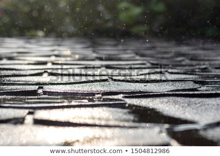 Rooftop shingles stock photo © chrisbradshaw