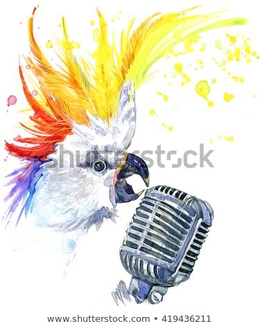 funny parrot singing stock photo © rastudio
