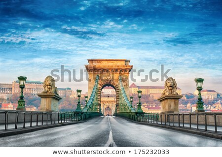 buda castle and chain bridge budapest hungary stock photo © photocreo