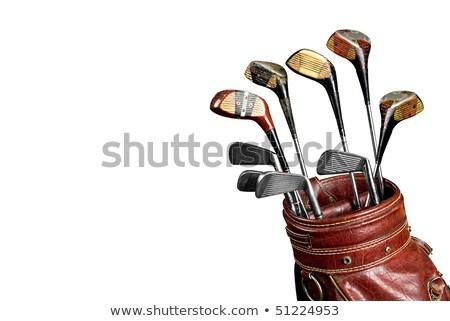 golf · klub · izolált · fehér - stock fotó © shutswis