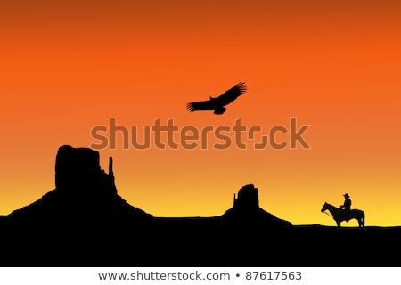 cowboy · silhouet · heuvel · zonsondergang · oceaan · hemel - stockfoto © meinzahn