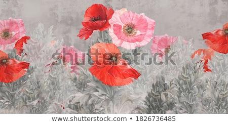 resumen · floral · amapola · flores · verano - foto stock © anna_om