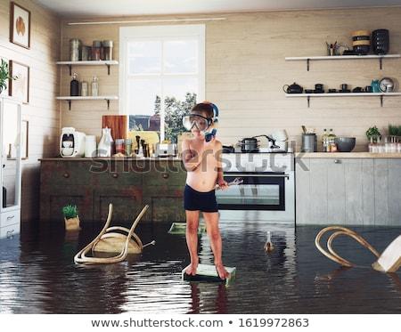 inundaçao · casa · água · vermelho · telhado · rio - foto stock © mike_expert