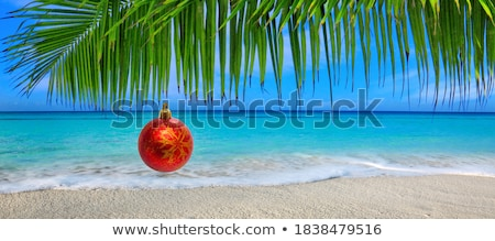 palm tree with lights Stock photo © alex_grichenko