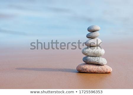 Zen piatră ramură palmier apă pietricele Imagine de stoc © mariephoto