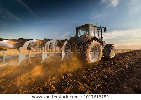 Plowed agriculture Stock photo © stevanovicigor
