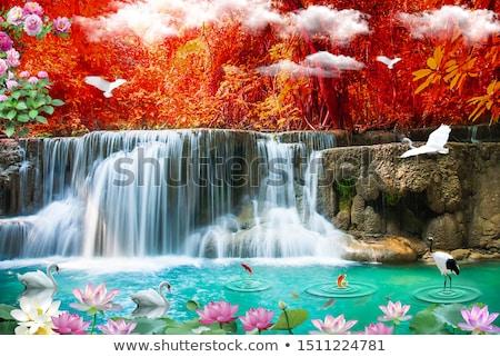 natural waterfall background stock photo © scenery1