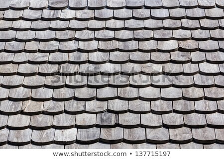 Ruined house tile roof Stock photo © photosebia