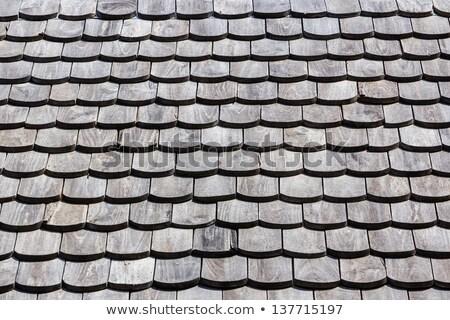 öreg · ház · részlet · elhagyatott · csempe · tető - stock fotó © photosebia