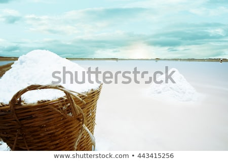 Salt piles on a saline exploration Stock photo © meinzahn