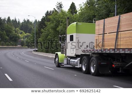 Fehér teherautó mozog fő- út űr Stock fotó © franky242