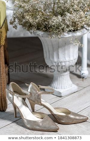 Paire élégante lumière chaussures bois blanche Photo stock © jaycriss