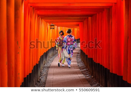 Japanese Torii Gates - Kyoto Japan Stock photo © jeayesy
