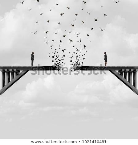 Aves divorciado ilustración animales lágrimas tristeza Foto stock © adrenalina
