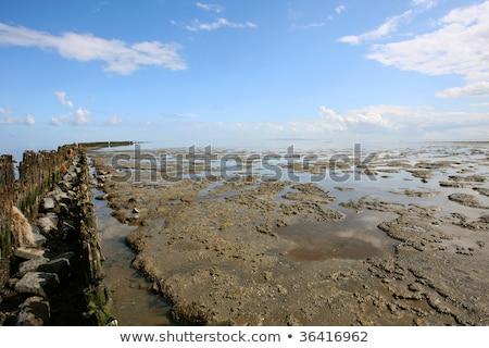 laag · getij · zee · noorden - stockfoto © peter_zijlstra