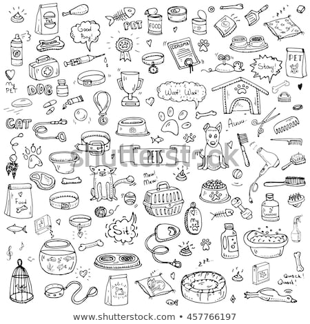 Vector graphic icon set of vet and pet supplies Stock photo © feabornset