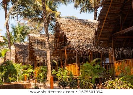 Paglia capanna tetti spiaggia view goa Foto d'archivio © Juhku