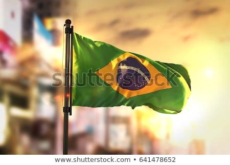 Бразилия день вектора иллюстрация прибыль на акцию 10 Сток-фото © kovacevic