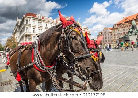 Ló fuvar vár turisták öreg tér Stock fotó © Mariusz_Prusaczyk