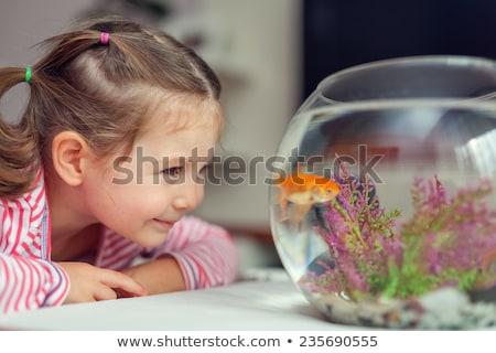 Dziewczynka patrząc ryb zbiornika akwarium dziecko Zdjęcia stock © wavebreak_media