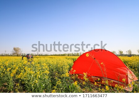 a red and black mountain bicycle standing in a field stock photo © ziprashantzi