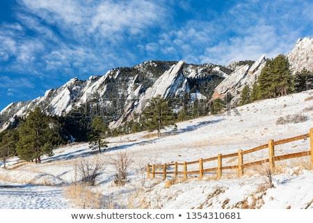 Kövek hó hóvihar fa terv hegy Stock fotó © meinzahn