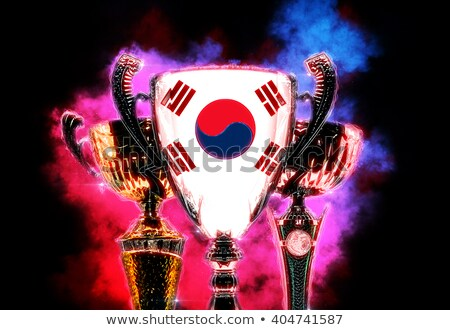 Trophy cup textured with flag of South Korea. Digital illustrati Stock photo © Kirill_M