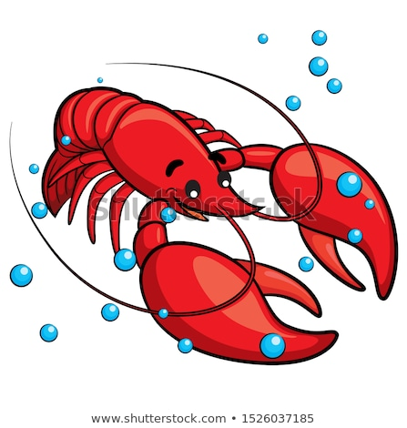 lobster isolated illustration stock photo © conceptcafe