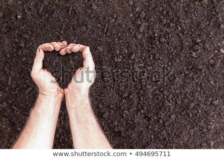 Pair of hands holding soil in heart shape Stock photo © ozgur