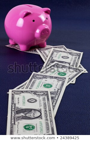 trail of money leading to piggy bank stock photo © ozgur