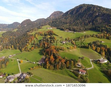 Dağ görmek üst vadi Avusturya alpine Stok fotoğraf © CaptureLight