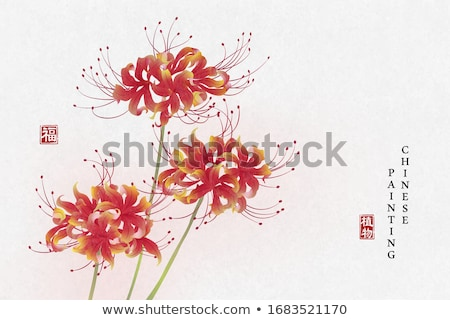 Red Flower Lycoris Stock photo © odina222