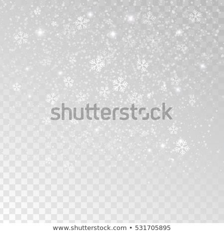 黒 ベクトル 雪 孤立した 白 抽象的な ストックフォト © Pravokrugulnik