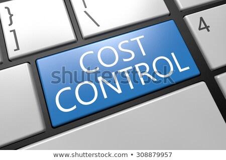 kék · költségvetést · készít · numerikus · billentyűzet · billentyűzet · 3d · illusztráció · fémes - stock fotó © tashatuvango