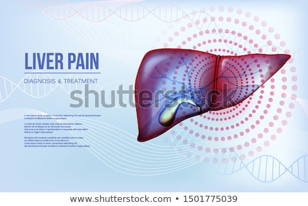 fatty liver disease diagnosis medical concept 3d stock photo © tashatuvango