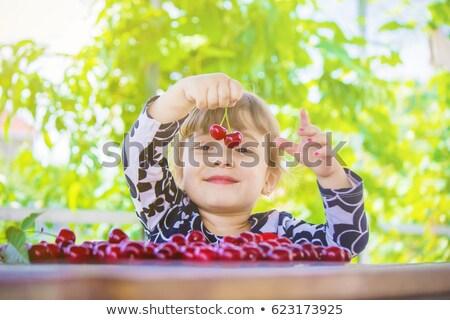 Girl picking cherries Stock photo © IS2