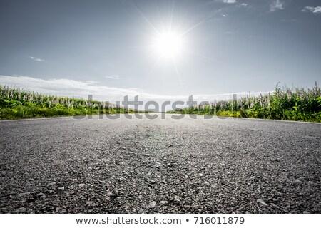 Asphalte route détaillée vue jaune Photo stock © kyolshin