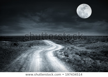 road through desert with moon in sky Stock photo © IS2