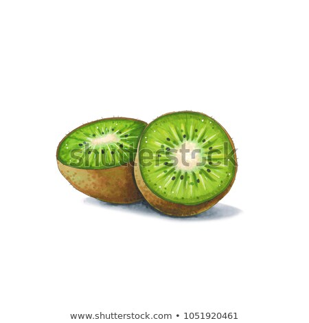 Kiwi fruit on a white background. Sketch done in alcohol markers Stock photo © user_10003441