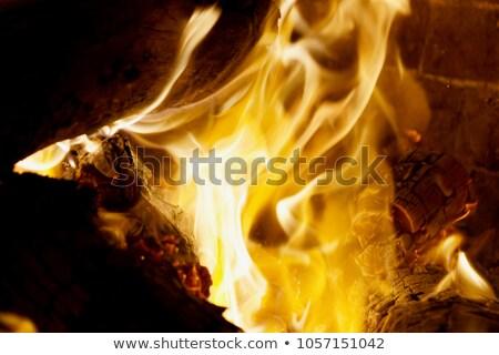 égő · kandalló · tűz · világítás · fűtés · ház - stock fotó © is2