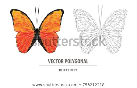 gold polygonal butterfly stock photo © blackmoon979