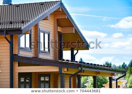 beautiful log house stock photo © givaga
