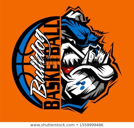 Bulldog Basketball Sports Mascot Stock photo © Krisdog