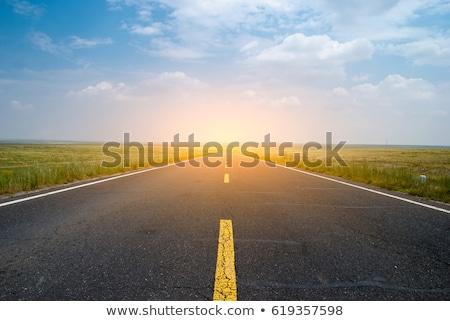 Estrada savana campo pôr do sol ilustração árvore Foto stock © colematt