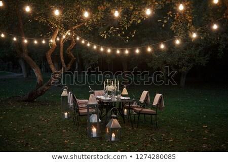mooie · christmas · kaars · decoraties · licht · home - stockfoto © anneleven